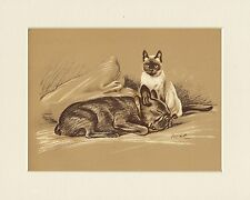 FRENCH BULLDOG & SIAMESE CAT 1930'S MAC LUCY DAWSON DOG ART PRINT READY MOUNTED