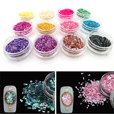 12Pcs 3D Mix Colors Glitter Sequins Powder Dust Acrylic Nail Art Kits