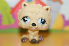 Littlest Pet Shop Figur Hund Chow Chow #662, super niedlich