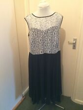 Stunning BNWT Dorothy Perkins Curve Black Cream Lace Detail Dress Size 24