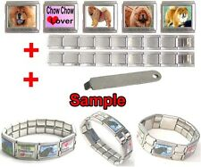 Chow Chow Dog 18mm Mega Stainless Steel Italian Charms Bracelet + Tool HG29