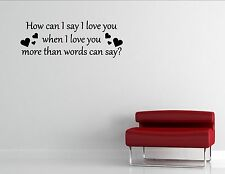 How Can I Say I Love You When I Love You- Vinyl Quote Me Wall Art Decals #0380