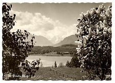 German RPPC Lilac Bushes Lake Flowers Clouds Real Photo Unposted Vintage