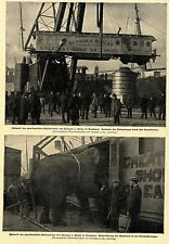 """Greatest Show on Earth"" Ankunft von Barnum & Bailey in Hamburg 1900"