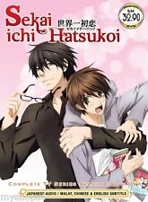 DVD Sekai Ichi Hatsukoi Season 1 + 2 Vol. 1 - 24 END Complete Boys Love Anime