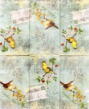 cYPRESS hOME Two (2) Single Guest Buffet Napkins Aero Postale American Goldfinch