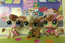 Littlest Pet Shop #1066#1833#918 Cream Brown Post Card Cow Accessories