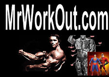 Mr Work Out .com  Domain Name For Sale Gym Weights Body Building Get Online Gyms