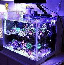 LED light coral grow marine reef tank white blue aquarium fish tank SPS LPS grow