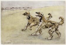 AFGHAN HOUND DOG LIMITED EDITION PRINT - DRY-POINT ENGRAVING - Henry Wilkinson