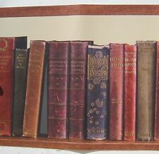 BOOKS BOOKSHELF LIBRARY  Wallpaper Border 10 ""