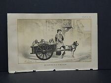 Cows Bulls Cattle Dairy Farming 1888 Engraving #033 Delivering Milk in Belgium