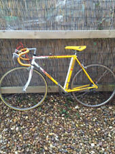 Falcon Team Banana Vintage Road Racing Racer Bike Collectors Item L'Eroica