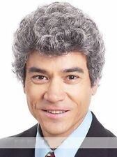Classic Natural Silver Grey Short Curly Synthetic Wig Leisure Comfort Men's Wig