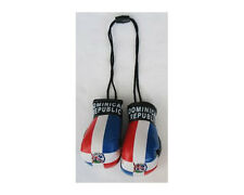 DOMINICAN REPUBLIC COUNTRY FLAG MINI BOXING GLOVES .. NEW
