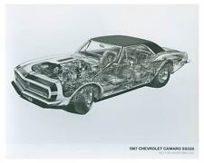 1967 Chevrolet Camaro SS350 Automobile Photo Poster zch4363