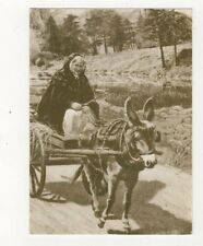 Peasant Woman Driving To Market In The Old Days Ireland 1984 Postcard 984a