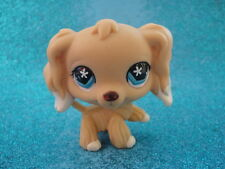 ORIGINAL Littlest Pet shop Cocker Spaniel dog #748 Shipping with Polish