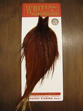 Fly Tying Whiting Bronze Rooster Cape White #W