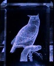 "3D Laser Etched Crystal Glass Owl on Branch NEW 1 ½""x1 ¼"" Gift Box NEW Made USA"