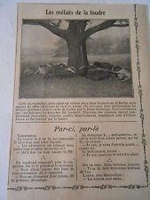 Les Méfaits de la foudre Violent orage à Berlin Troupeau Image Print 1909