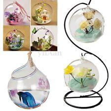 Suspendu Hanging Vase Fleur Plante Verre Boule Hydroponique Décor Maison Mariage