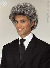 Short Curly Grey Male Wig Barister Legal Eagle Vicar Fancy Dress