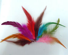 Beautiful!100pcs Mixed Color rooster tail feathers 5-7 inches /10-15cm Crafts