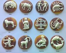 12 Large Signs of the Zodiac Cabochons—1.75 inch diameter—High Quality Resin