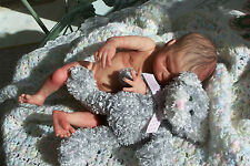 Reborn Preemie Baby Boy, Ken with anatomically correct boy body! Max sculpt-SALE