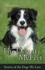 The Dog at My Feet : Stories of the Dogs We Love (2014, Paperback)