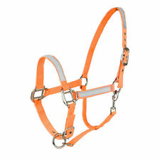 Horze Neon Orange Safety Reflective COB SMALL HORSE Horse Pasture Trail Halter