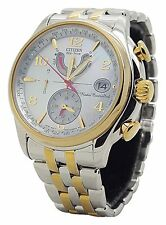 Citizen Eco Drive FC0004-58D Ladies Two Tone Steel World Time Date 39mm Watch