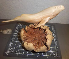hand carved Whale on Wood Burl - awesome piece of art ! great for home or cabin