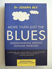 More Than Just the Blues: Understanding Serious Teenage Problems Joseph Rey 2002