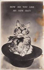 NO 743 - CUTE CAT IN HAT P/CARD - RP - BY THE RAM PRINTERS - UNPOSTED