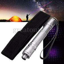 Laser Violet Light Pen Beam Focus Lazer Starry Sky Blue-Purple Holster 5mW
