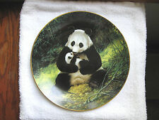 The Panda Bear -  ( By Will Nelson ) First Issue - 1988