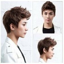 Hot! Handsome boys wig new Korean short Brown men's Heat  hair Cosplay wigs -cap