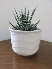 Vintage Mid Century West German Plant Pot Modernist Plant Pot
