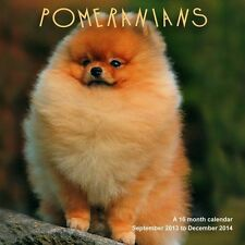 POMERANIANS 2014 SQUARE UK WALL CALENDAR BRAND NEW AND SEALED BY MAGNUM