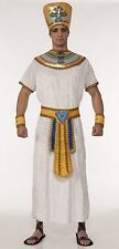 Egyptian King Costume Pharaoh Roman Tut Gold White Hat Cuffs Adult Mens Toga Std
