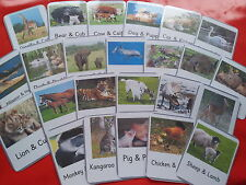 ANIMALS & THEIR BABIES - 24 FLASH CARDS- TEACHING RESOURCE- EARLY YEARS- EYFS