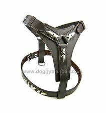Brown Leather Dog Harness inglese Staffy Staffordshire Bull Terrier Bulldog