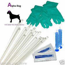 "10 - 6"" Tubes Standard AI Kit Canine Artificial Insemination Rod Breeding Sheath"