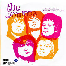 "THE JAYBIRDS Take Your Chance 7"" . sonics rolling stones birds r&b psychedelic"