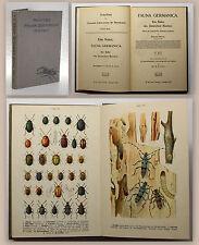 Reitter Fauna Germanica Die Käfer 4. Bd. 1912 Biologie Zoologie Deutschland xz