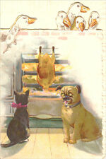 Antique Pug Dog & Kitten Watching Dinner Cook 1898 - LARGE New Blank Note Cards