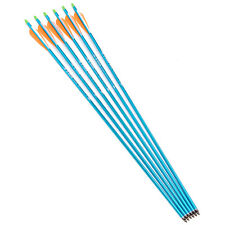 """30"""" Blue Aluminum Archery Dia 8.8mm for Compound Bow Hunting arrows X6"""