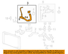 GM OEM Radiator-Lower Hose 19260480